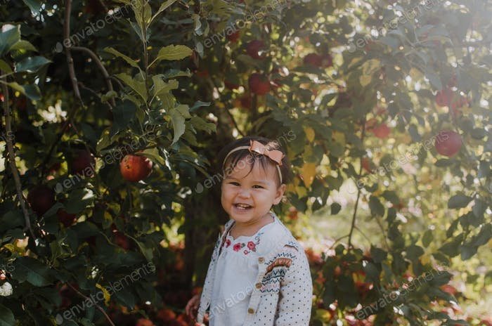 Toddler girl smiling in apple orchard