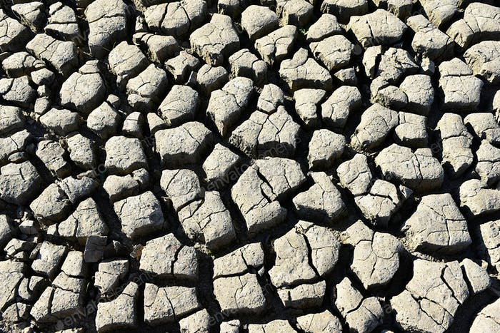 from the sun and drought cracked earth