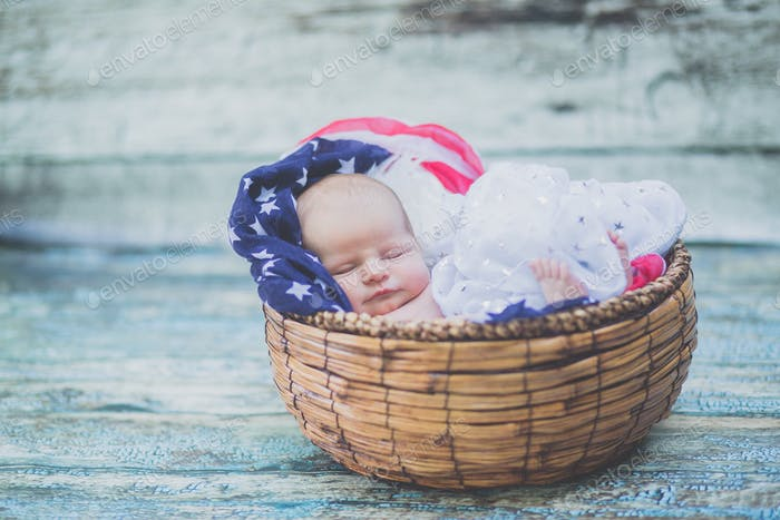 Fourth of July in basket