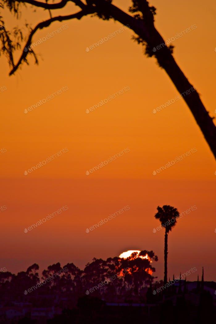 Калифорнийский закат солнца в пригородном районе в Сан-Диего.