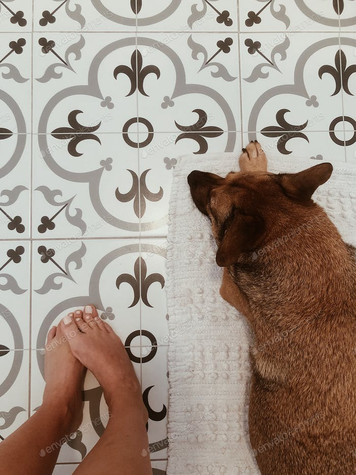 Dog laying next to girls feet on a rug