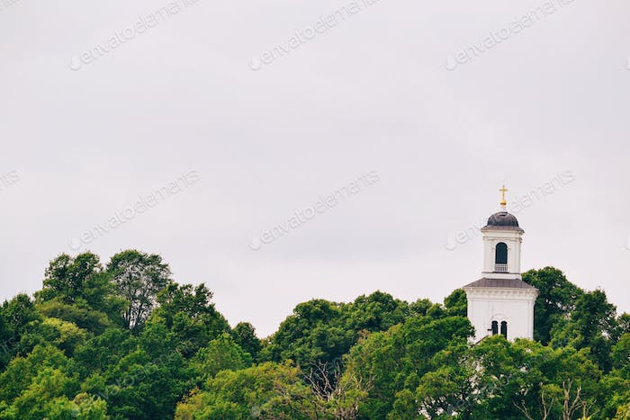 Church tower and treetops