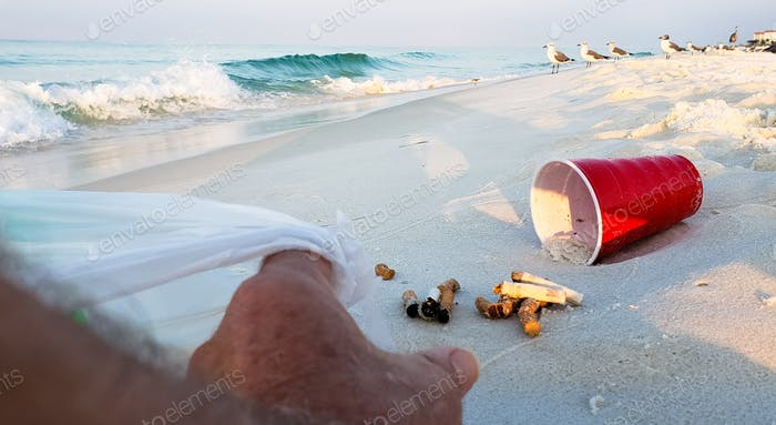The volunteer beach trash man is picking up cigarette butts and other trash left by careless