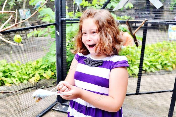 Aufregung! Fütterung der Vögel im Zoo!