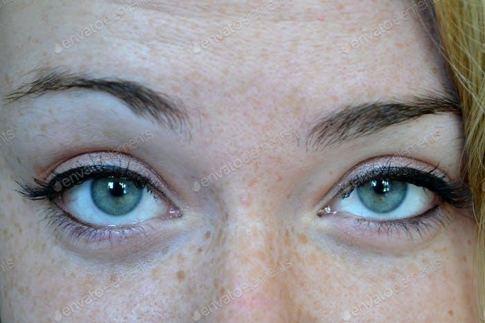 Ausdrucksstarke Augen eines Weibchens