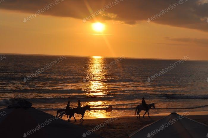 Horseback riding at sunset in Bali