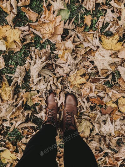 Brown boots on dried leaves