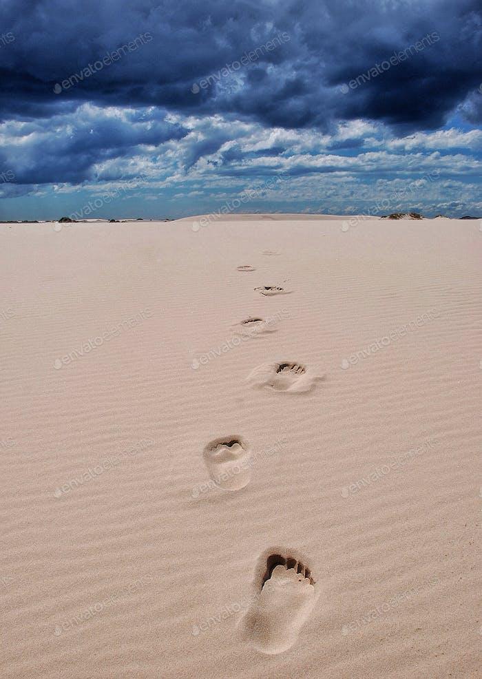 The Barefoot Traveller........