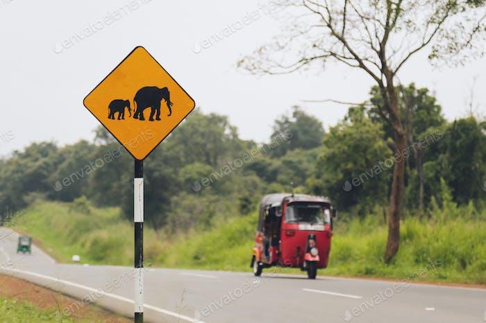 Señales de «cuidado con el cruce de elefantes» en la carretera de Sri Lanka.