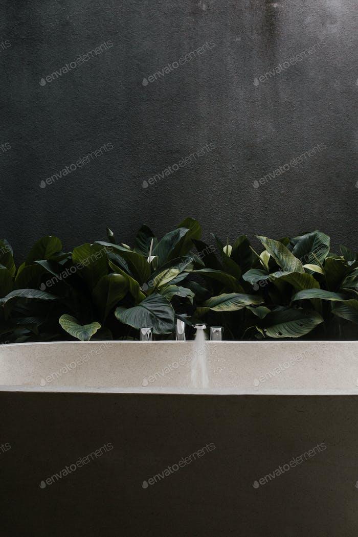 Outdoor Bathtub with Plants