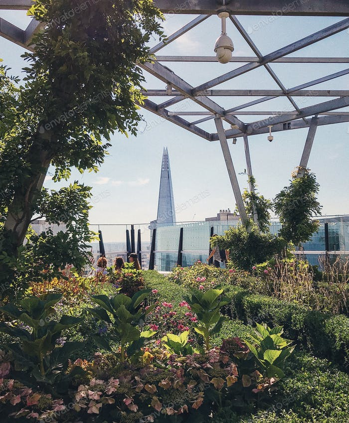 Roof top garden with a view on the Shard