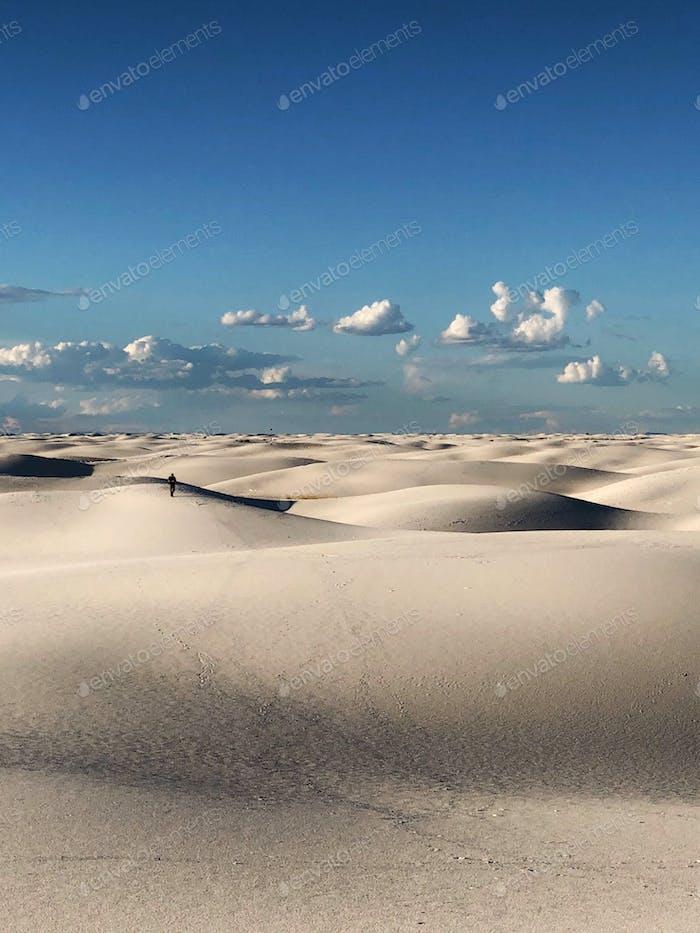 Lonesome dunes