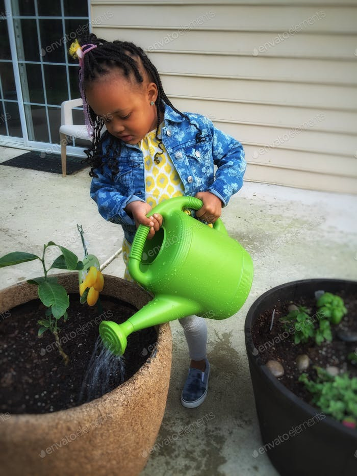 ishoot. She helped me plant some herbs and a Lemon tree!