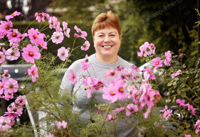 Portrait of adult senior 60 years old smiling woman in pink cosmos flowers in the garden