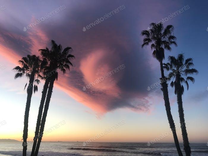 Sunrise, Ventura, 2020