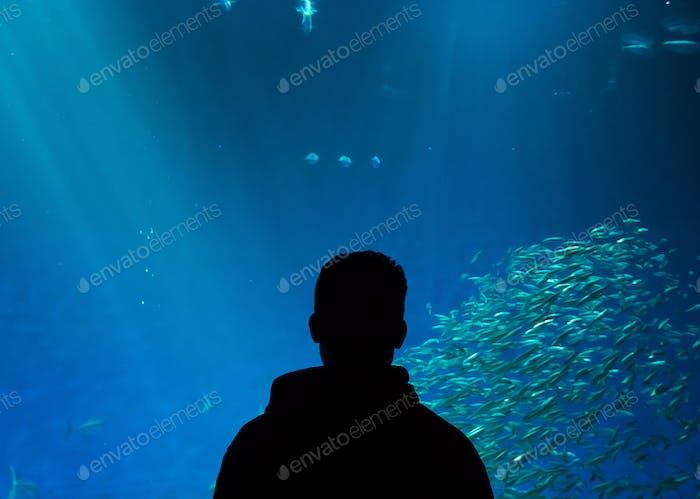 Mann im Aquarium