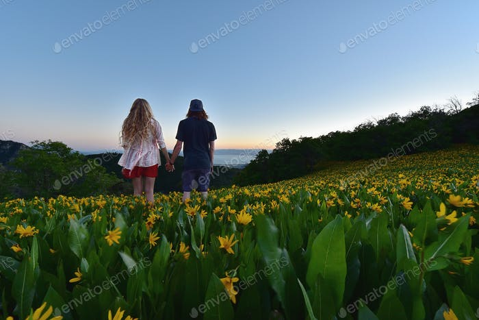Watching the sunset in a field of sunflowers with my girlfriend.