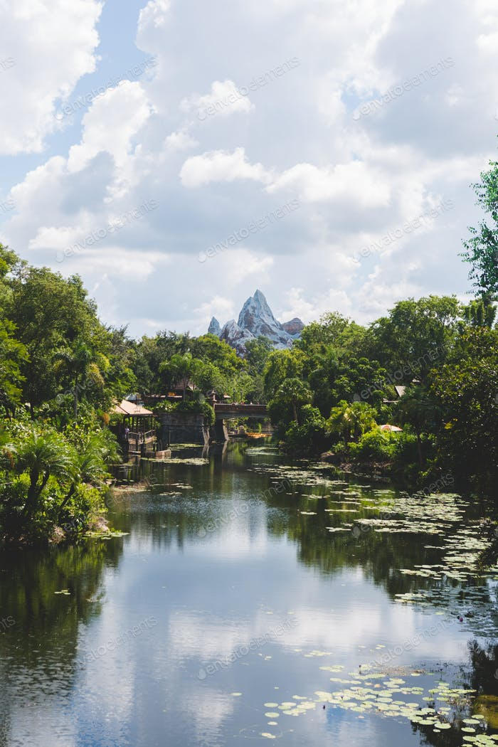 Inside Animal Kingdom