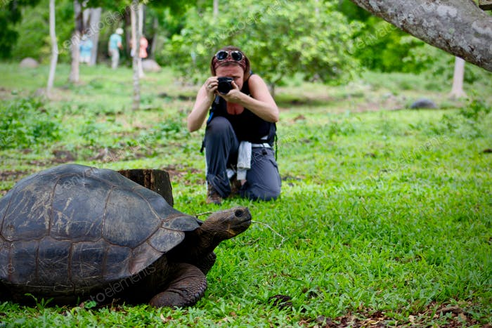 Woman Adventurer Taking Photo of Large Tortoise in Galapagos Islands