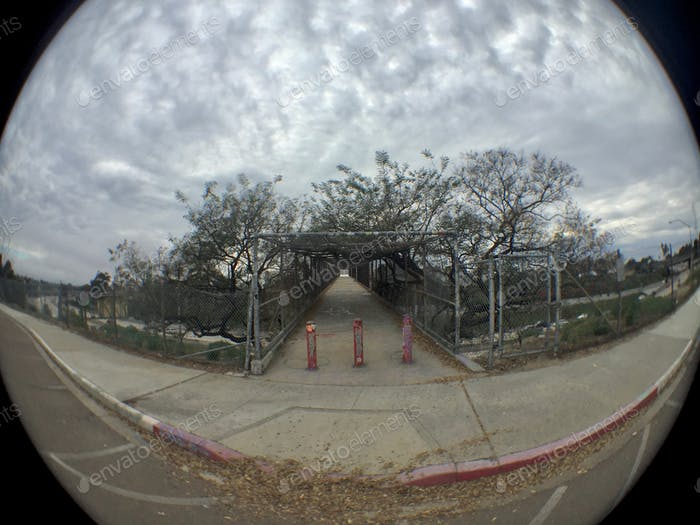 Fish eye lens dreaming of stormy weather