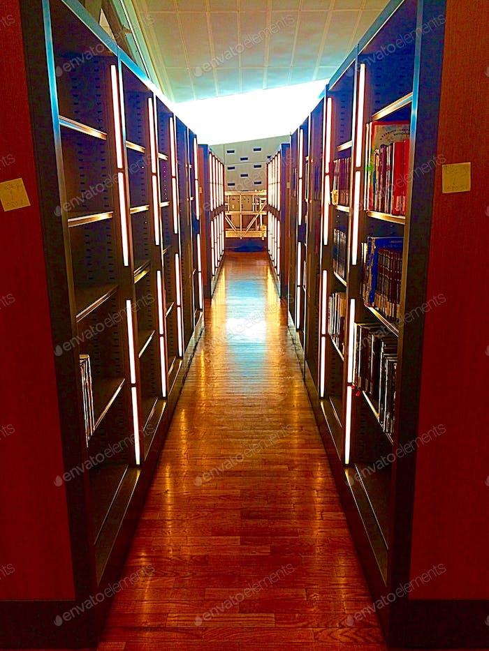 The Bibliotheca Alexandrina  (Alexandrian Library) in Alexandria .