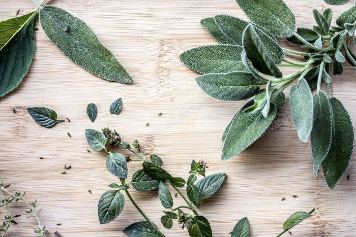 Sage, mint, thyme and mentholated sage scattered on a light wooden table