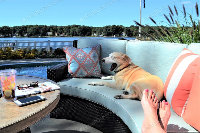 Outdoor living space on the lake! 💕nominated 🐶