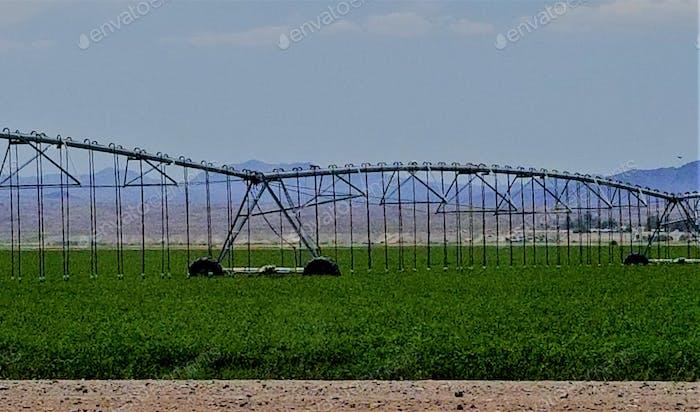 Landwirtschaft! NOMINIERT!!