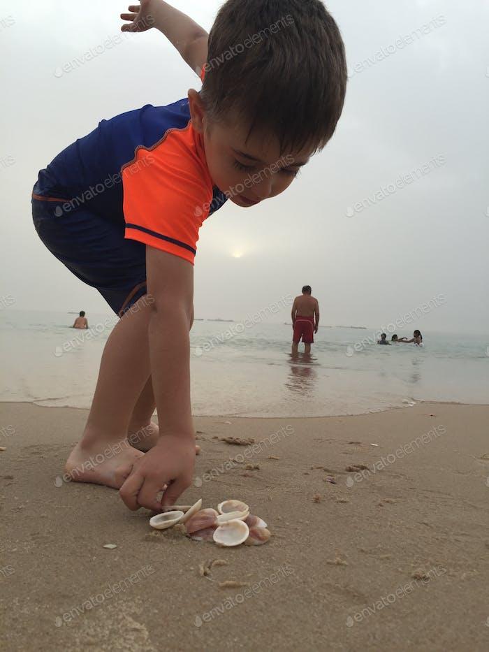 Collect seashell