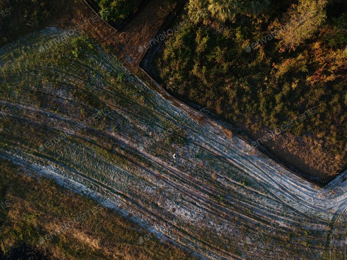 Drohnenaufnahme einiger tiefer Wälder. Siehst du mich? Der kleine Punkt in der Mitte? Haha