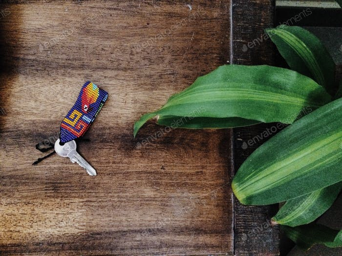 Buntes Schlüsselbund mit dem Schlüssel