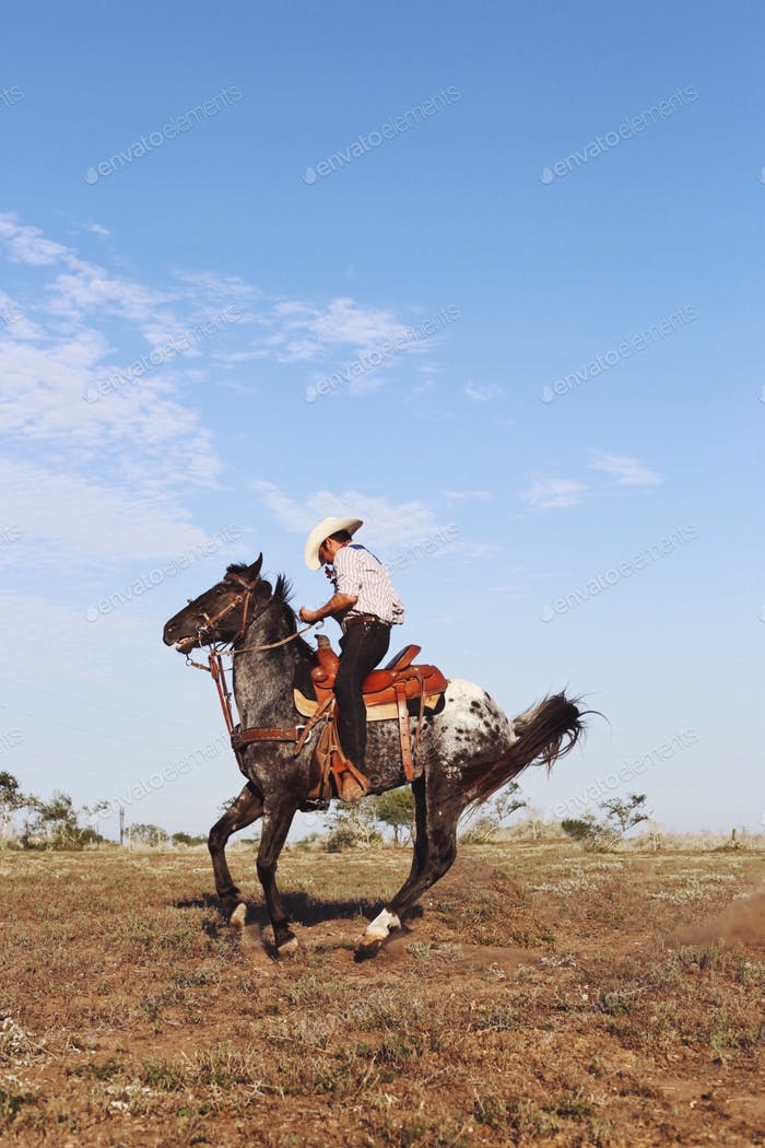 Mexican cowboy.