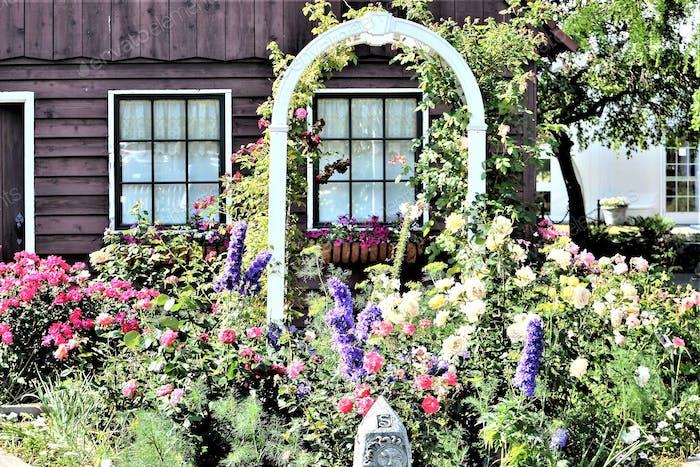 #flowersphotography #flowersphoto #flowerstalking #flowerday #flowersday #flowerslove #flowerloves