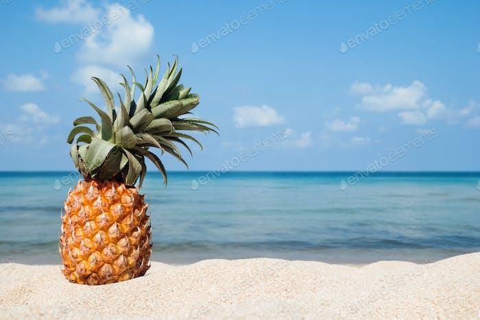 Sommer tropische Landschaft mit Ananas auf dem weißen Sandstrand auf dem Hintergrund des blauen Meeres und