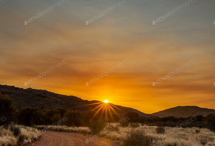 Sunset star burst