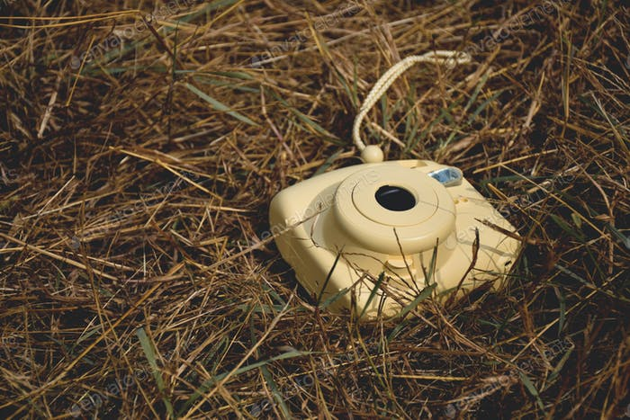 Yellow instant camera laying on a yellow dry grass