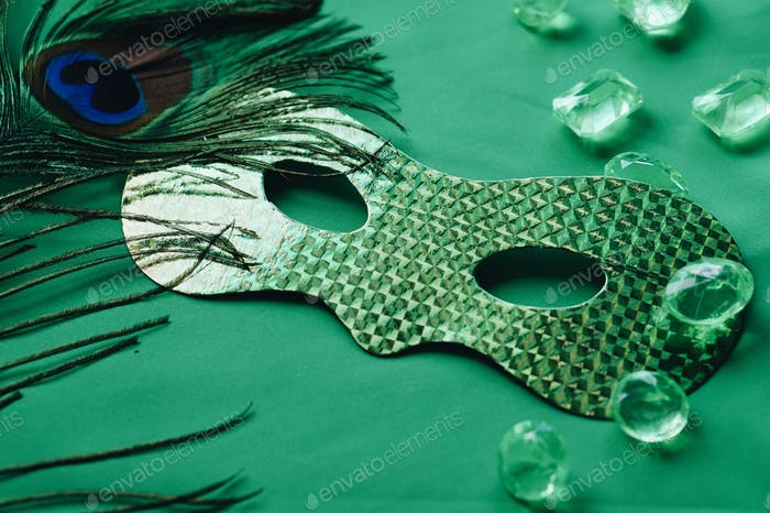 Mardi grass carnival mask on green background