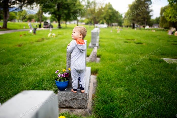 little boy cleaning a grave stone in a cemetery