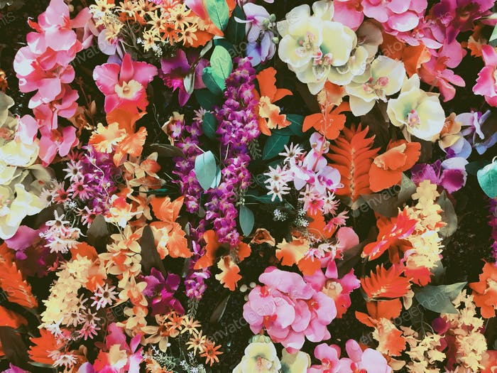 Colorful floral background/backdrop