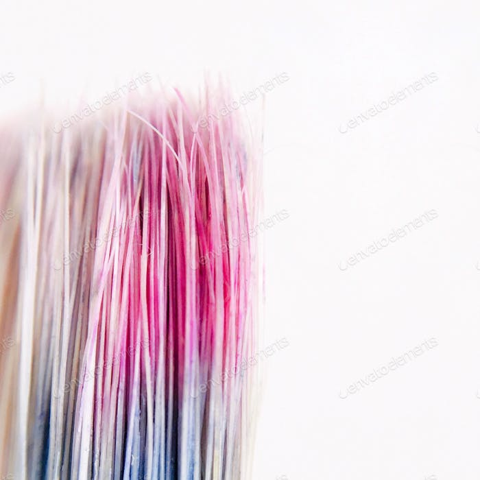 Macro photography shot of dry paintbrush bristles stained with pink and blue paint against a white