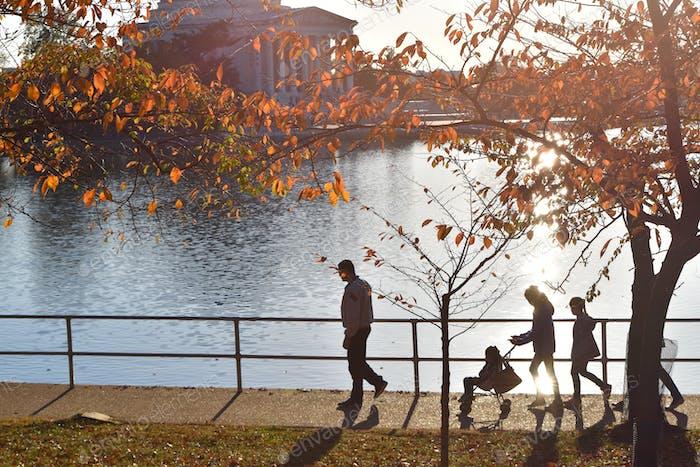 walking along the Tidal Basin in autumn