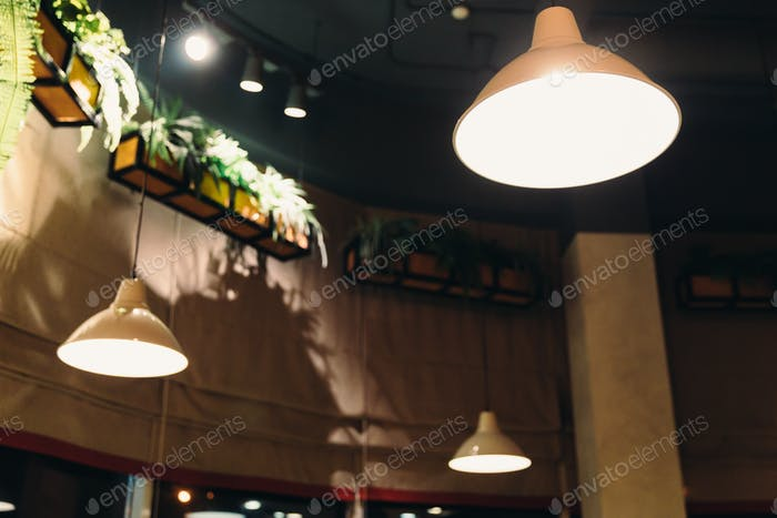 Bright chandeliers shine near the flower beds in the cafe