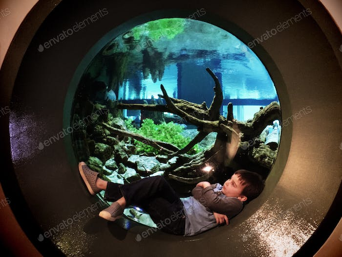 At the aquarium chilling out