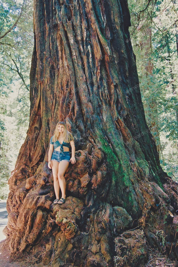 NOMINATED Beautiful, happy, girl standing on one of the Earth's giant species of redwood trees