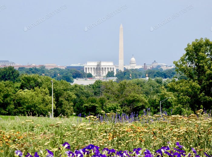View of the Washington Monument and the United States Capitol - Washington, DC.