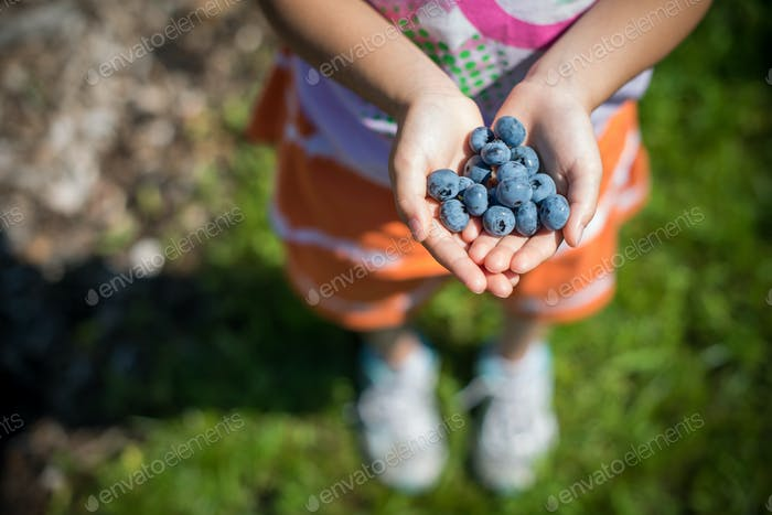Girl holding bunch of blueberries
