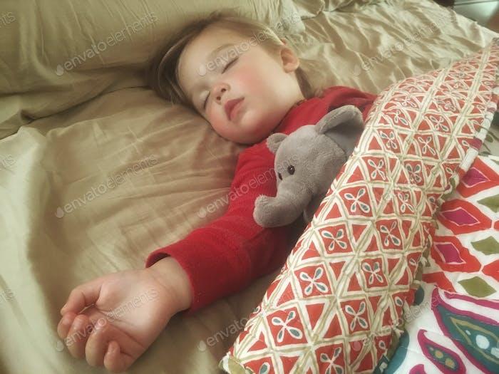 Девочка малыша, спящая в большой кровати, спрятанная с чучела слона