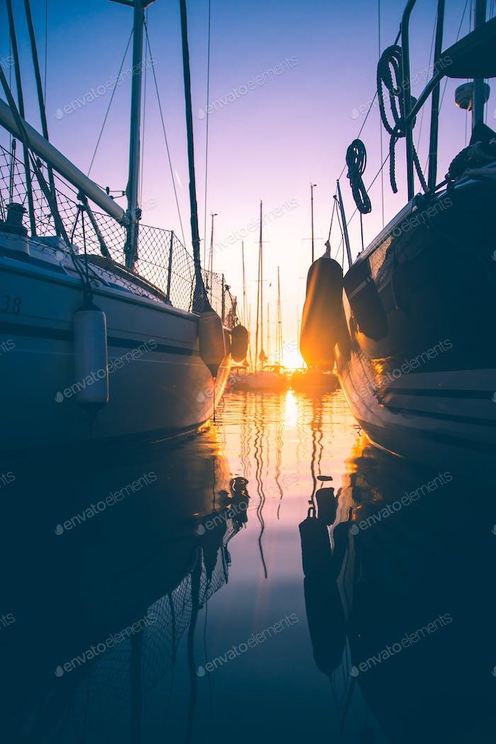 *Nominated* sunrise in the harbor