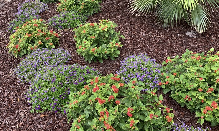 Landscaping commercial property is very important in order to create a higher sales figure.
