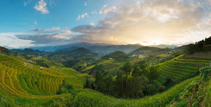 Dorf Terrasse Feld in Vietnam Sonnenuntergang